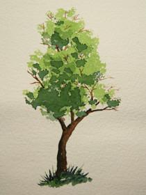 Baum tupfen